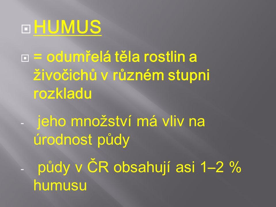 HUMUS = odumřelá těla rostlin a živočichů v různém stupni rozkladu
