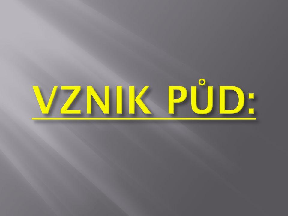 VZNIK PŮD: