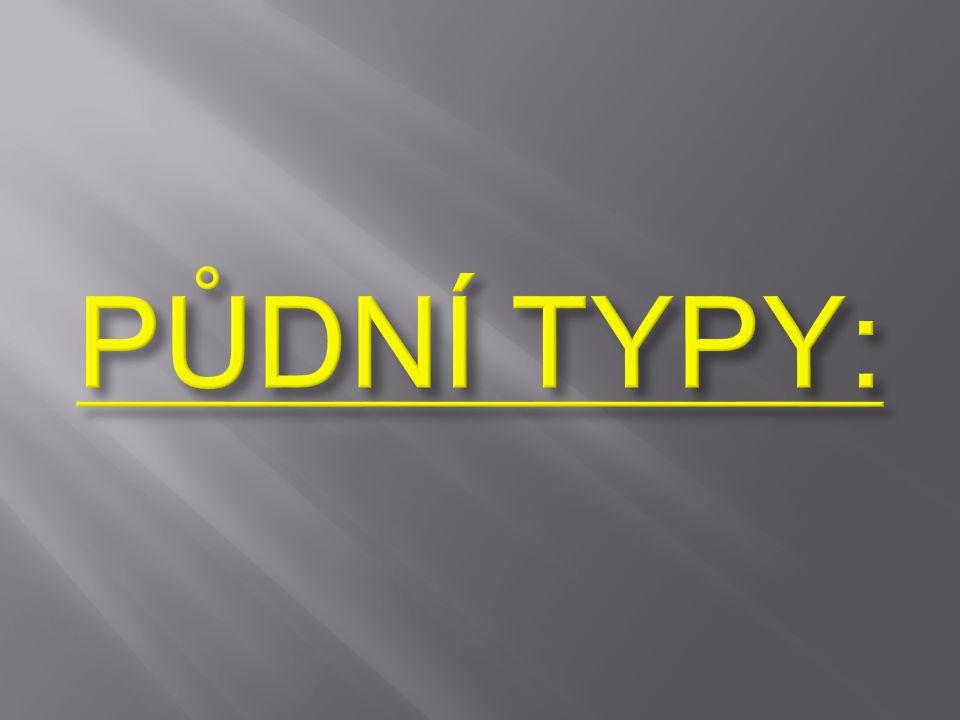 PŮDNÍ TYPY: