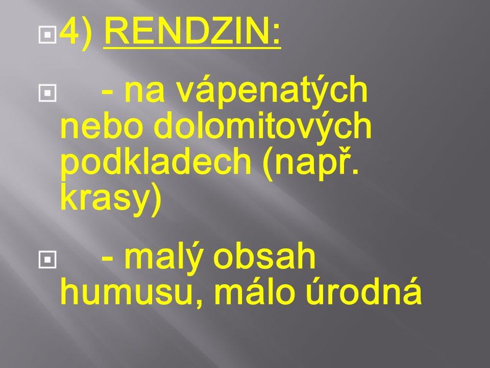 4) RENDZIN: - na vápenatých nebo dolomitových podkladech (např.