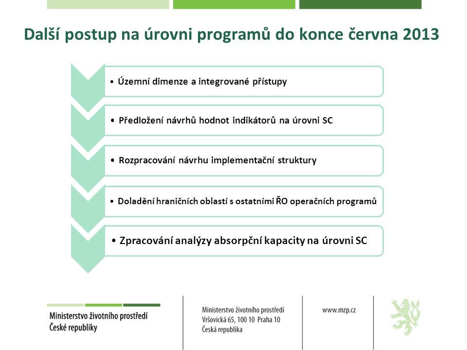 Další postup na úrovni programů do konce června 2013