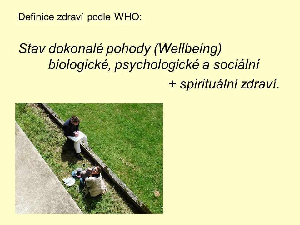 Stav dokonalé pohody (Wellbeing) biologické, psychologické a sociální