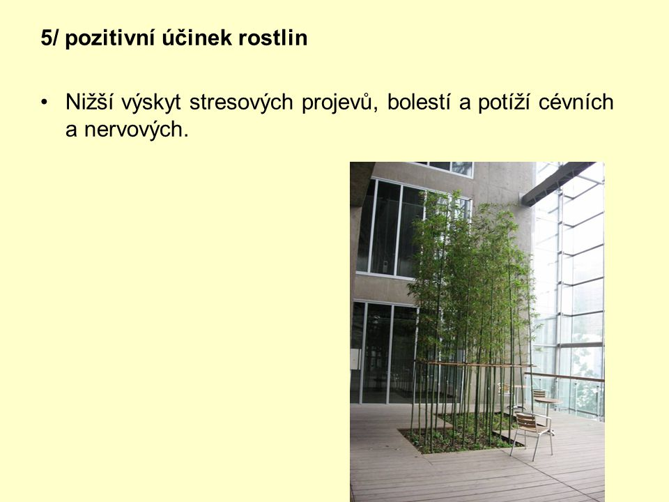 5/ pozitivní účinek rostlin