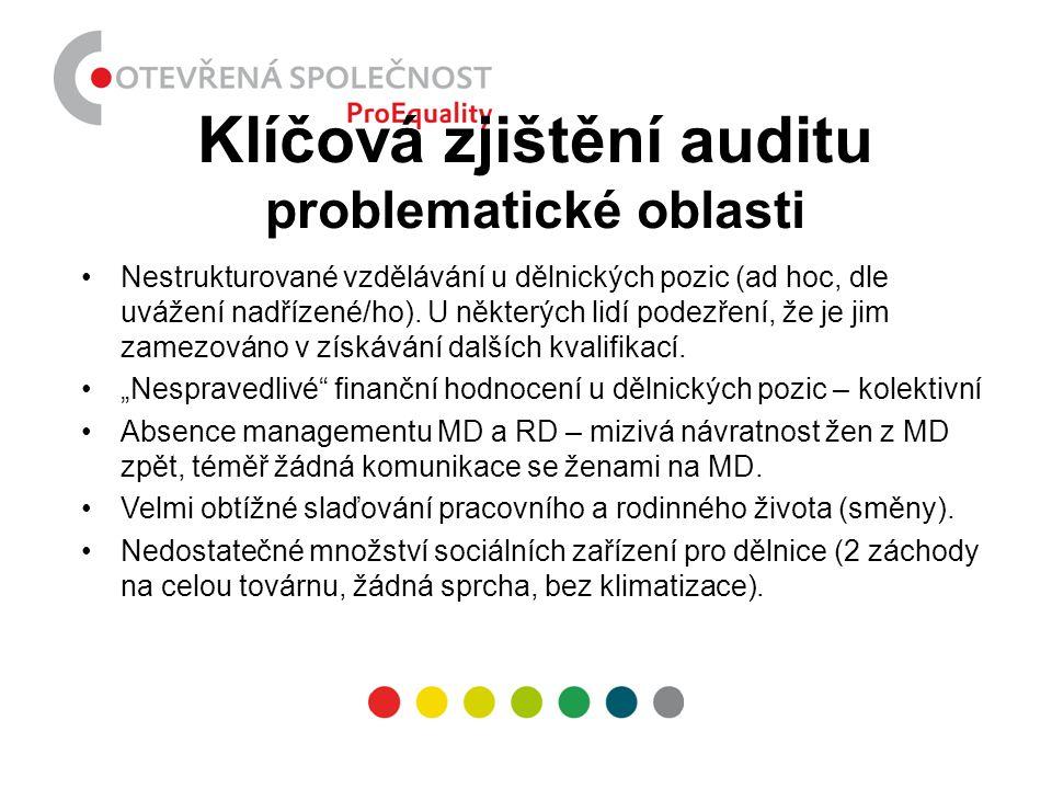Klíčová zjištění auditu problematické oblasti
