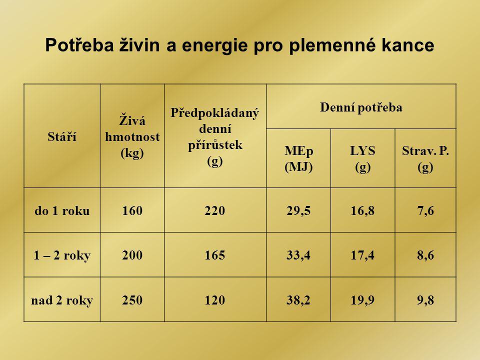 Potřeba živin a energie pro plemenné kance