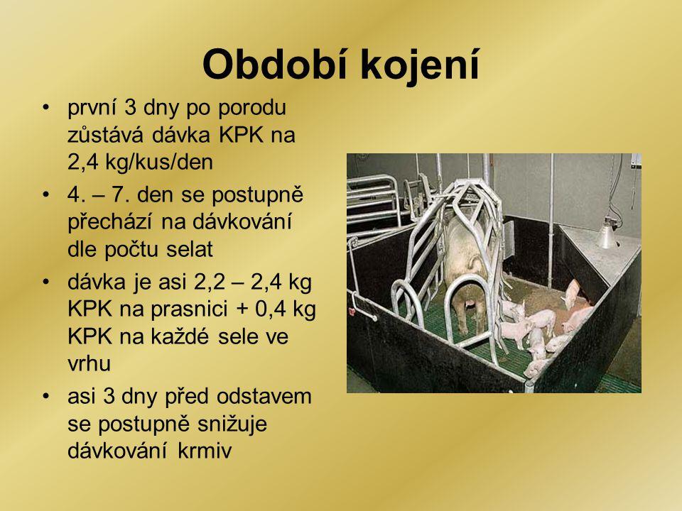 Období kojení první 3 dny po porodu zůstává dávka KPK na 2,4 kg/kus/den. 4. – 7. den se postupně přechází na dávkování dle počtu selat.
