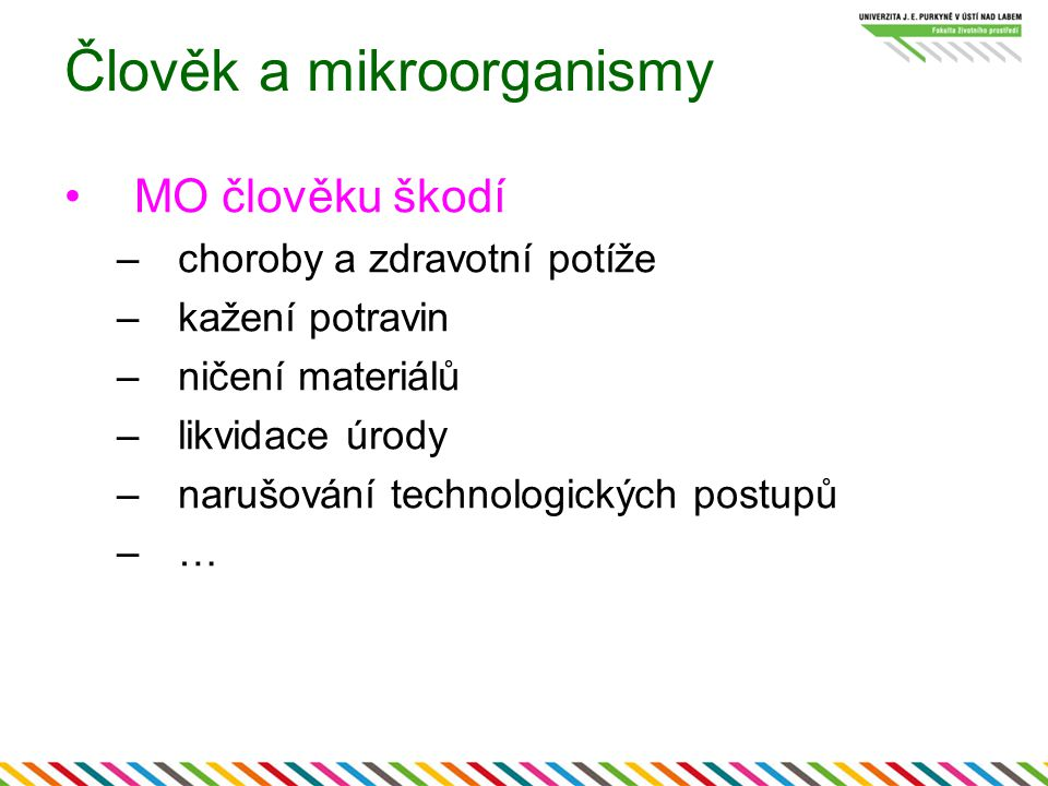 Člověk a mikroorganismy