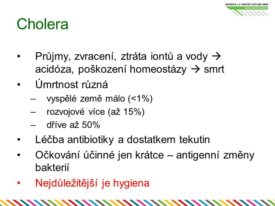 Cholera Průjmy, zvracení, ztráta iontů a vody  acidóza, poškození homeostázy  smrt. Úmrtnost různá.