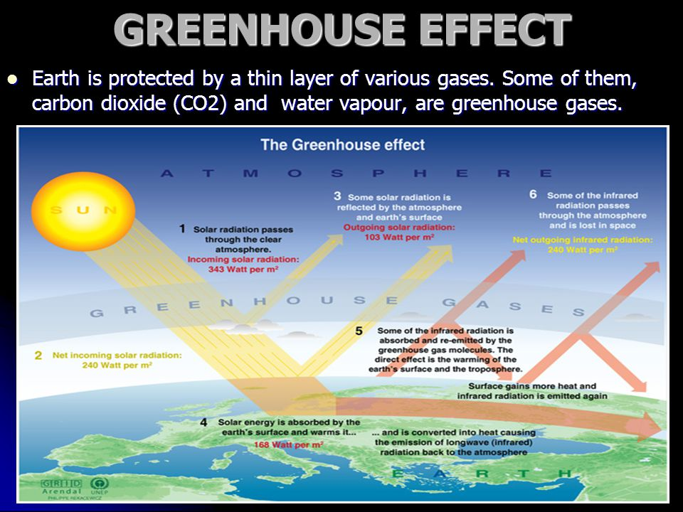 GREENHOUSE EFFECT Earth is protected by a thin layer of various gases.