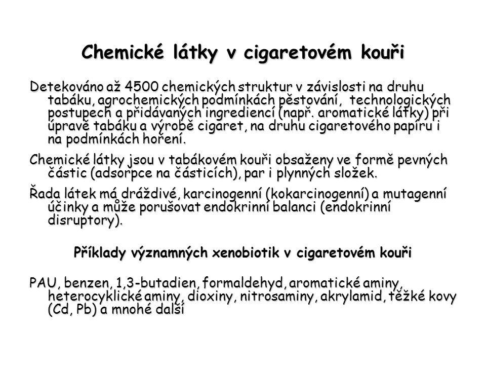 Chemické látky v cigaretovém kouři