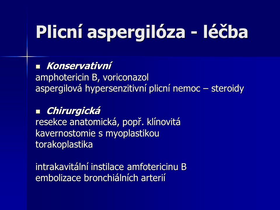 Plicní aspergilóza - léčba