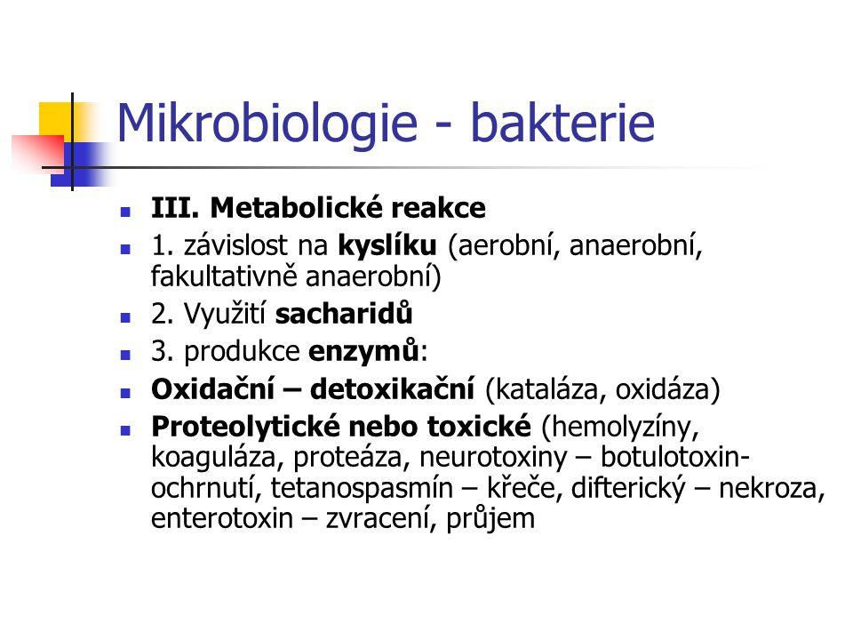 Mikrobiologie - bakterie