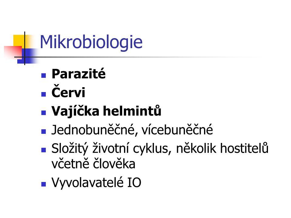 Mikrobiologie Parazité Červi Vajíčka helmintů