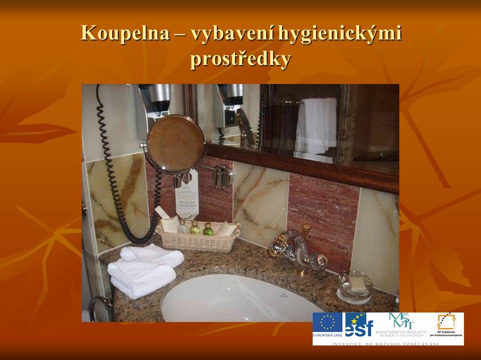 Koupelna – vybavení hygienickými prostředky