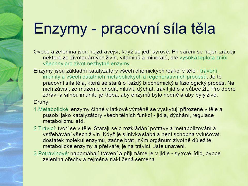 Enzymy - pracovní síla těla