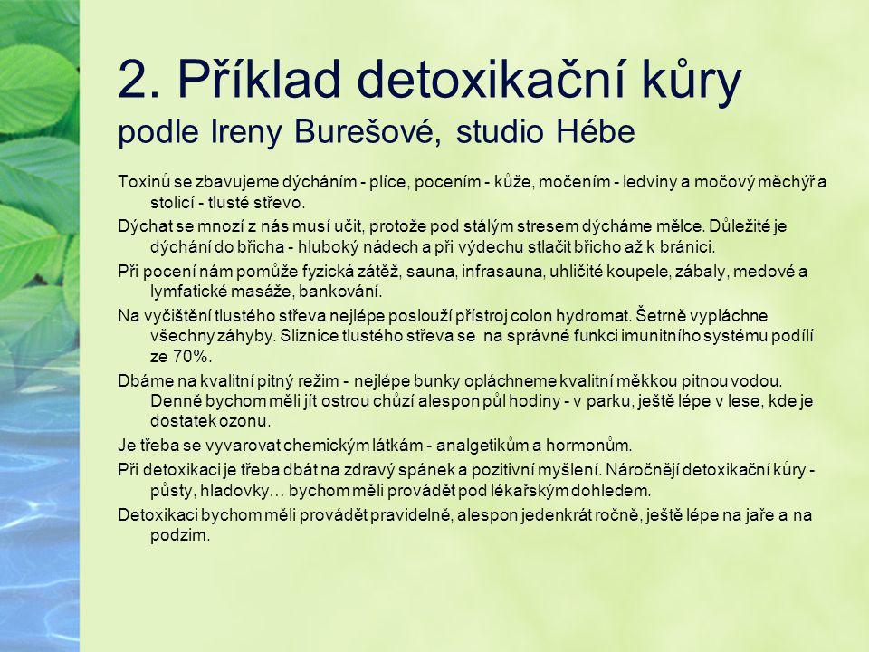 2. Příklad detoxikační kůry podle Ireny Burešové, studio Hébe