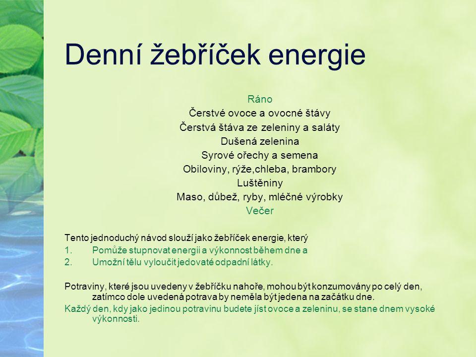 Denní žebříček energie