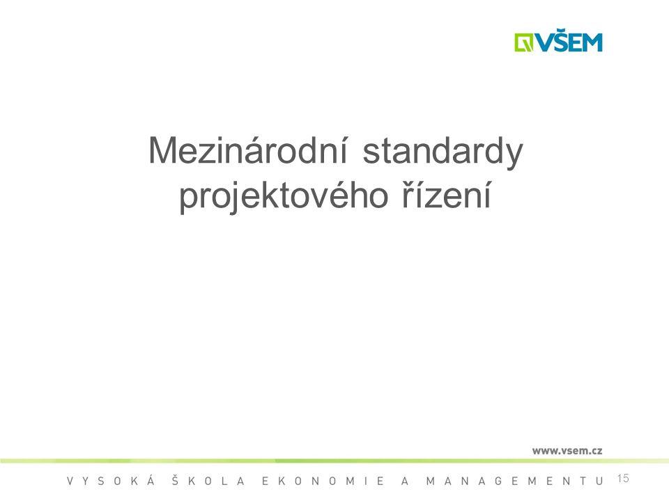 Mezinárodní standardy projektového řízení
