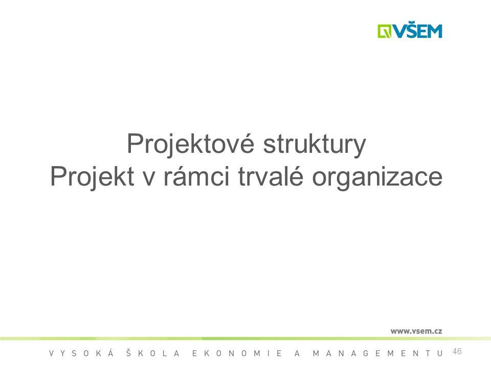 Projektové struktury Projekt v rámci trvalé organizace