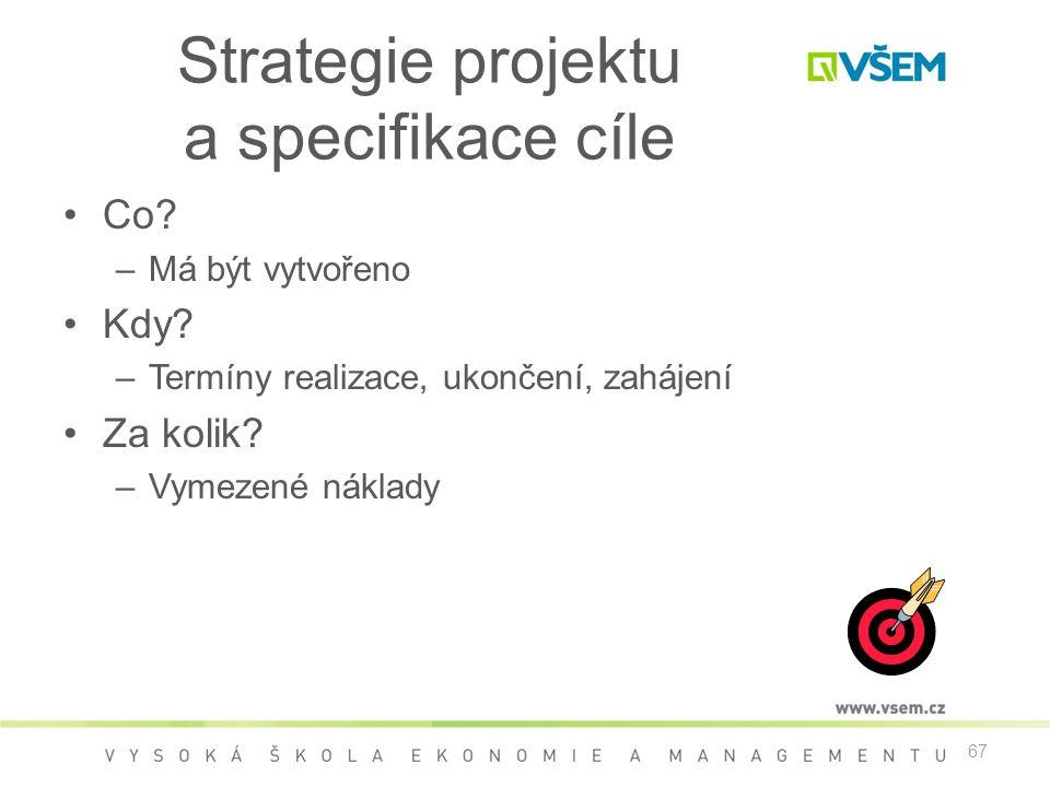 Strategie projektu a specifikace cíle
