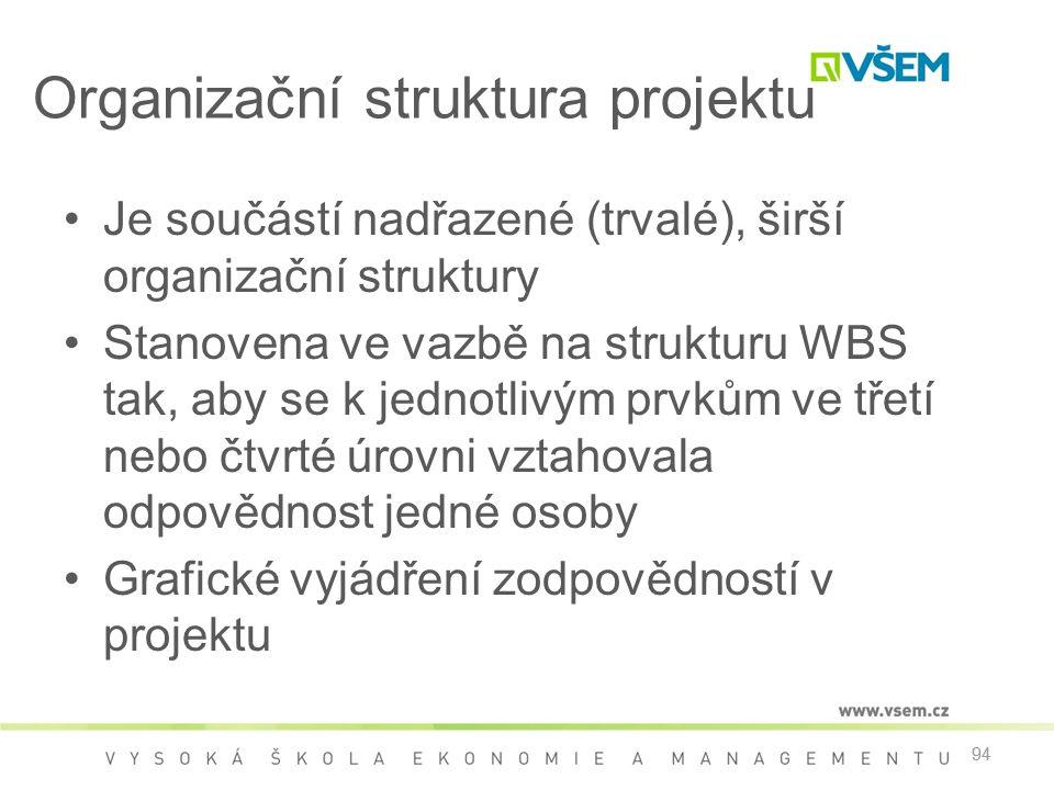 Organizační struktura projektu