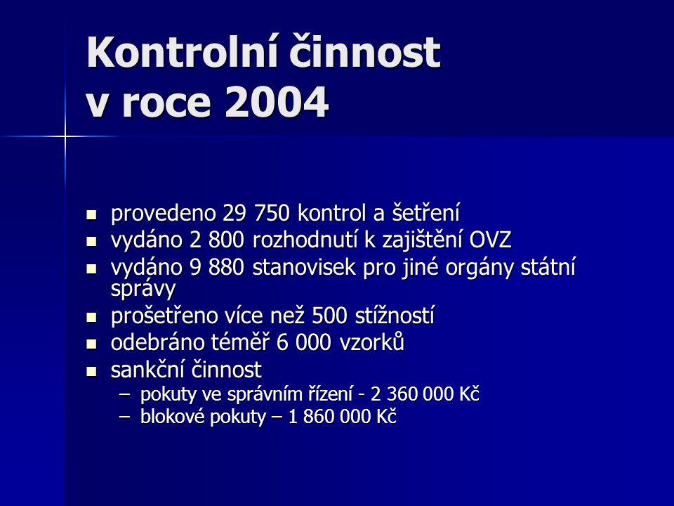 Kontrolní činnost v roce 2004