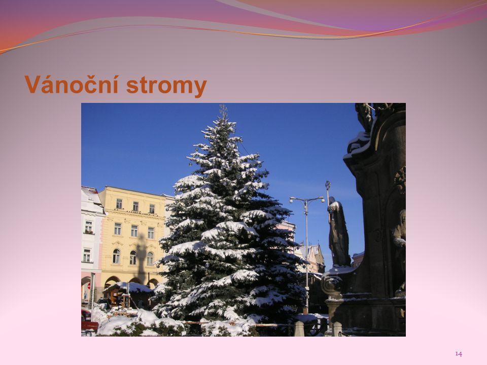 Vánoční stromy Foto: Mgr. Jiřina Kadlecová