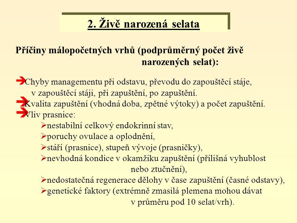 2. Živě narozená selata Příčiny málopočetných vrhů (podprůměrný počet živě. narozených selat):