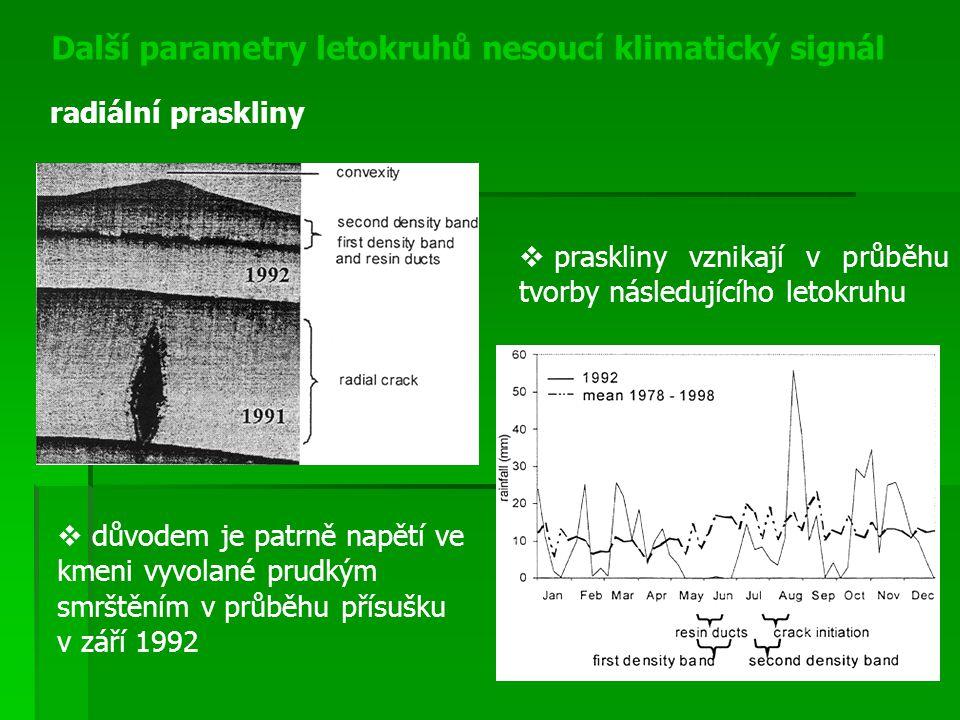 Další parametry letokruhů nesoucí klimatický signál