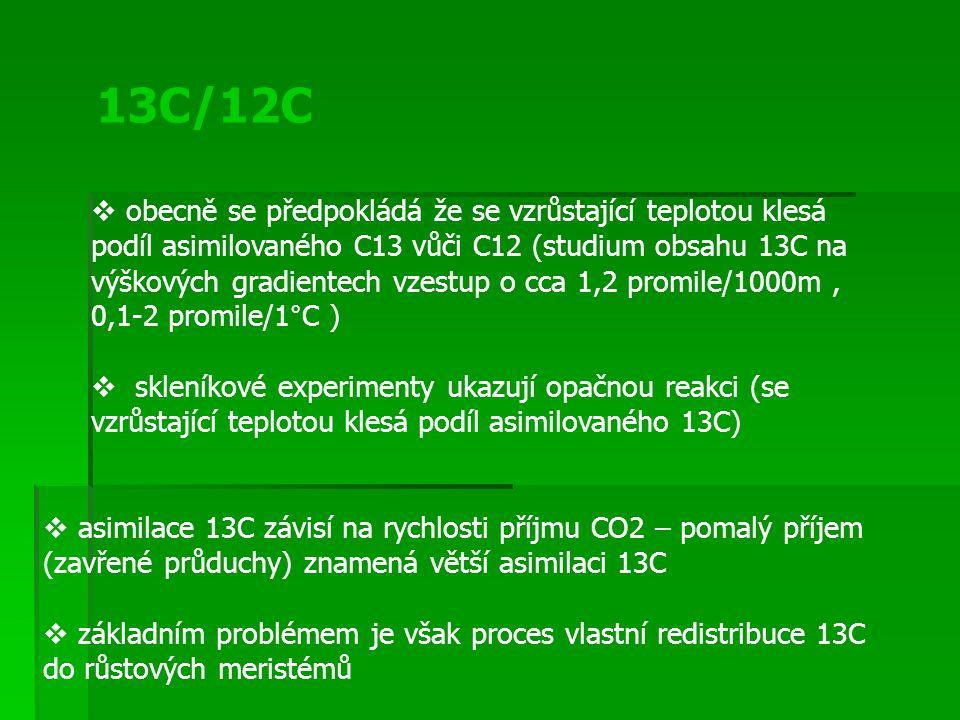 13C/12C