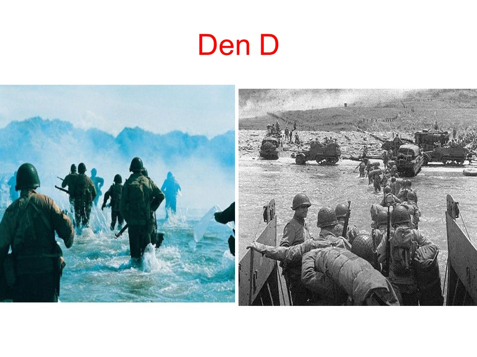 Den D