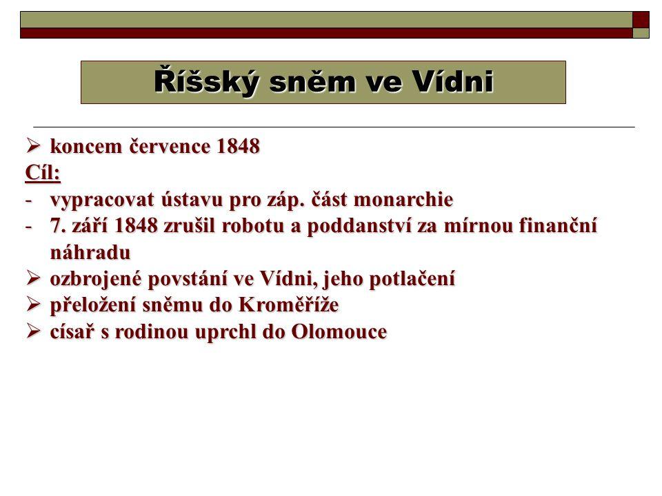 Říšský sněm ve Vídni koncem července 1848 Cíl: