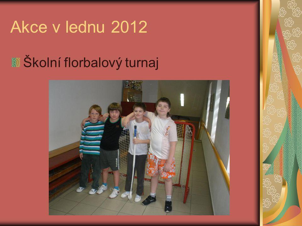 Akce v lednu 2012 Školní florbalový turnaj