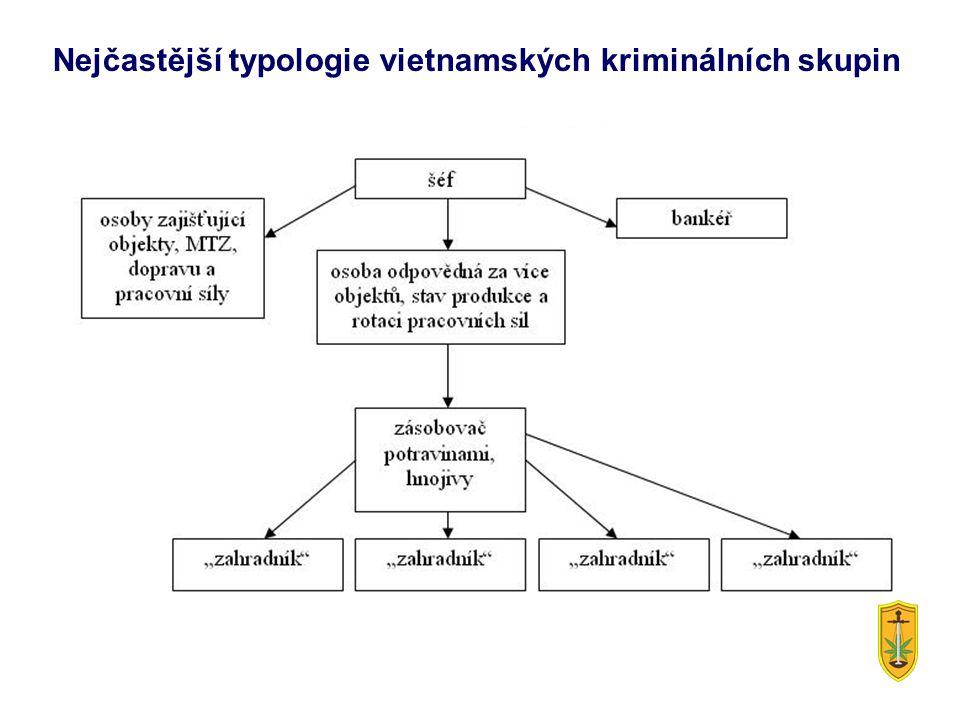 Nejčastější typologie vietnamských kriminálních skupin