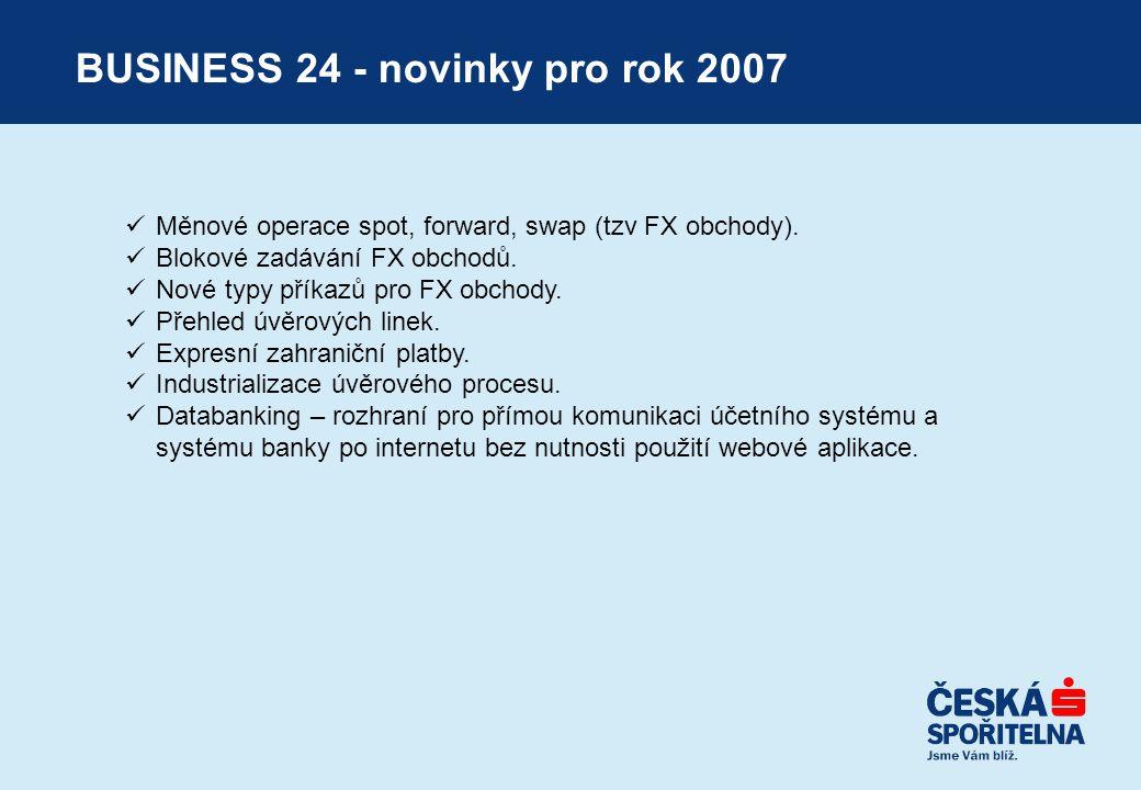 BUSINESS 24 - novinky pro rok 2007