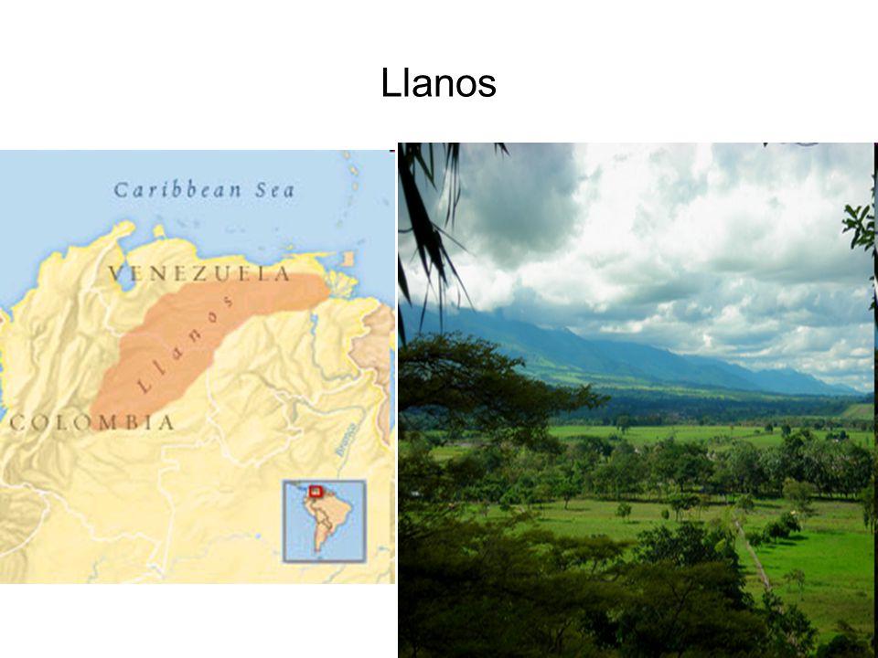 Llanos