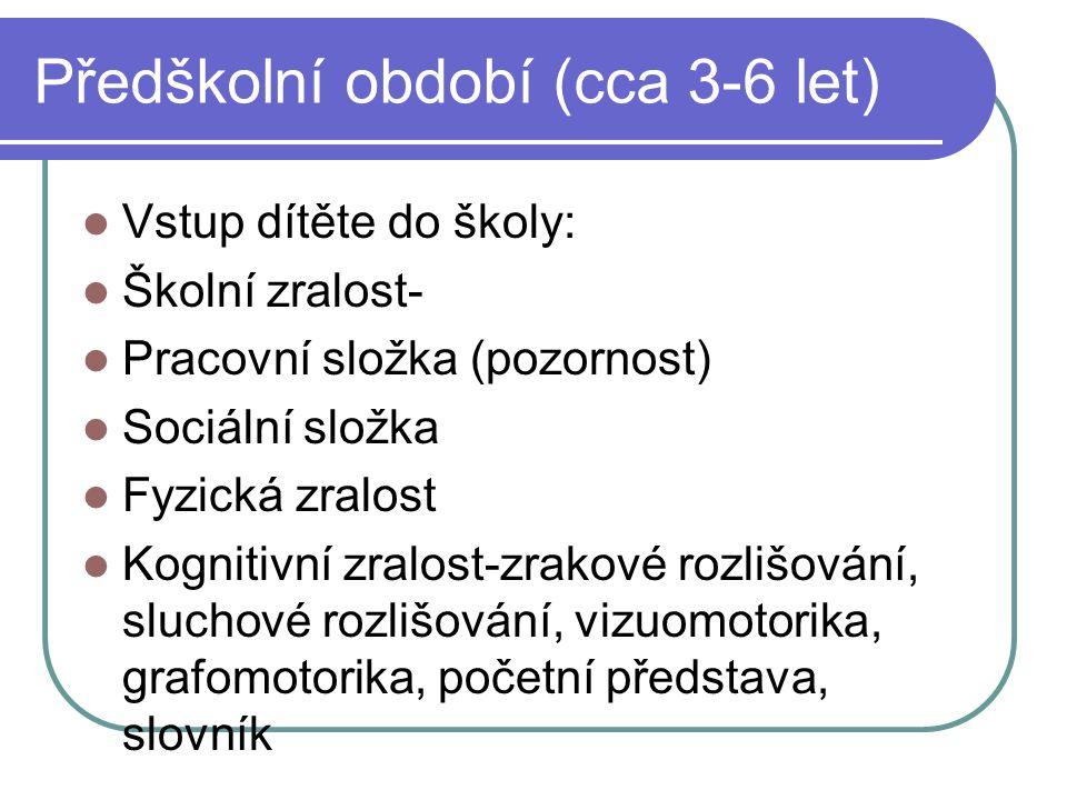 Předškolní období (cca 3-6 let)