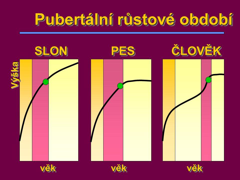 Pubertální růstové období