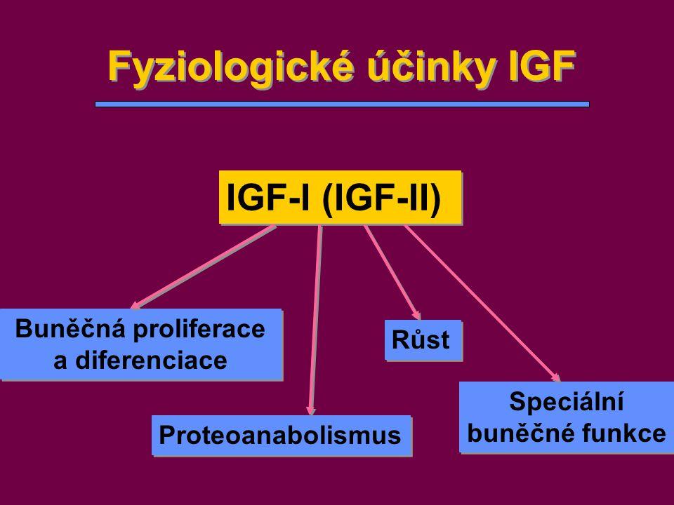 Fyziologické účinky IGF