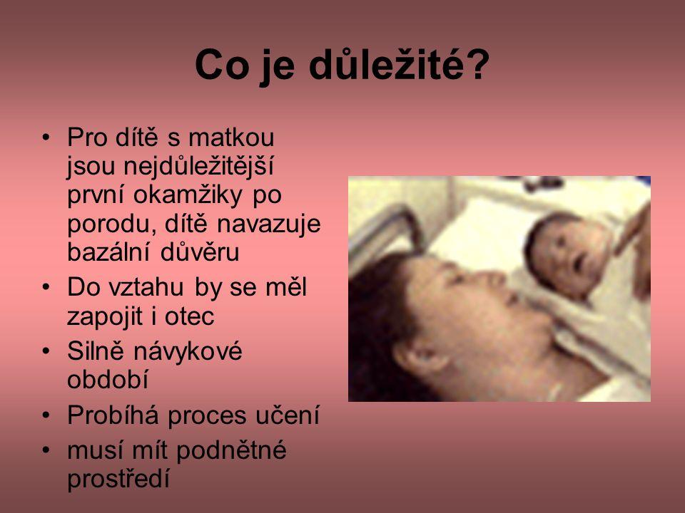 Co je důležité Pro dítě s matkou jsou nejdůležitější první okamžiky po porodu, dítě navazuje bazální důvěru.