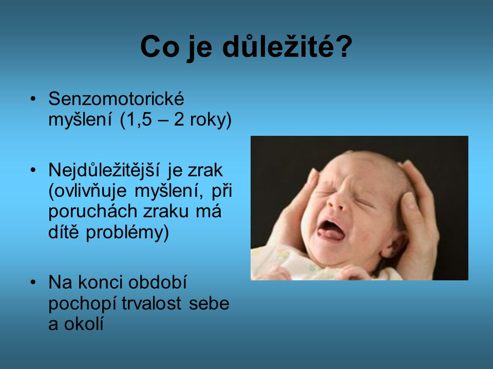 Co je důležité Senzomotorické myšlení (1,5 – 2 roky)