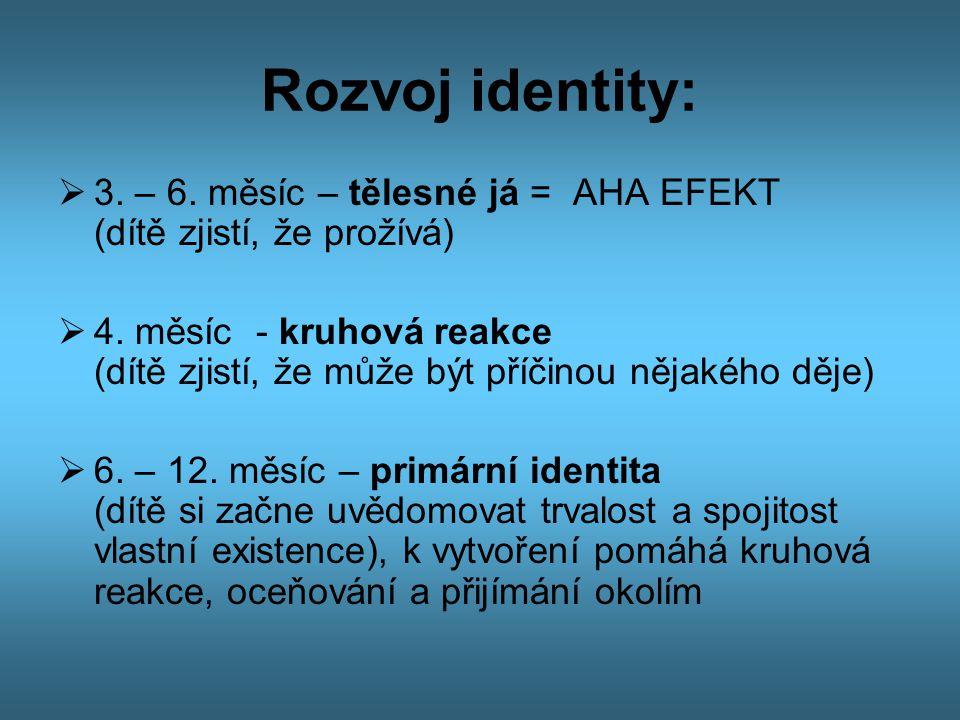 Rozvoj identity: 3. – 6. měsíc – tělesné já = AHA EFEKT (dítě zjistí, že prožívá)