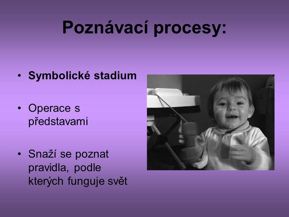 Poznávací procesy: Symbolické stadium Operace s představami