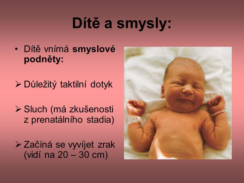 Dítě a smysly: Dítě vnímá smyslové podněty: Důležitý taktilní dotyk