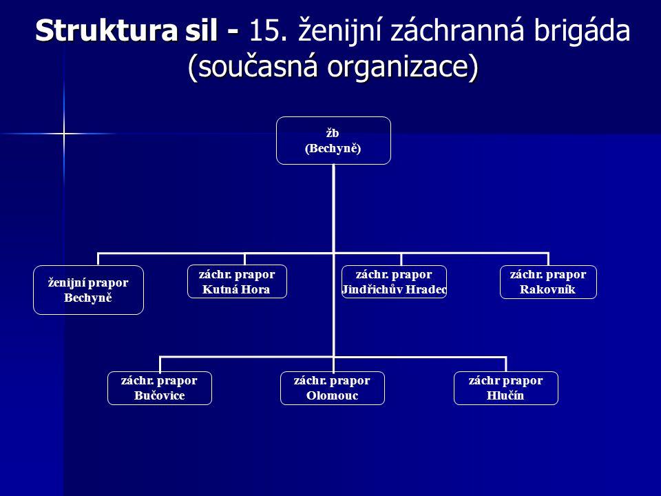 Struktura sil - 15. ženijní záchranná brigáda (současná organizace)