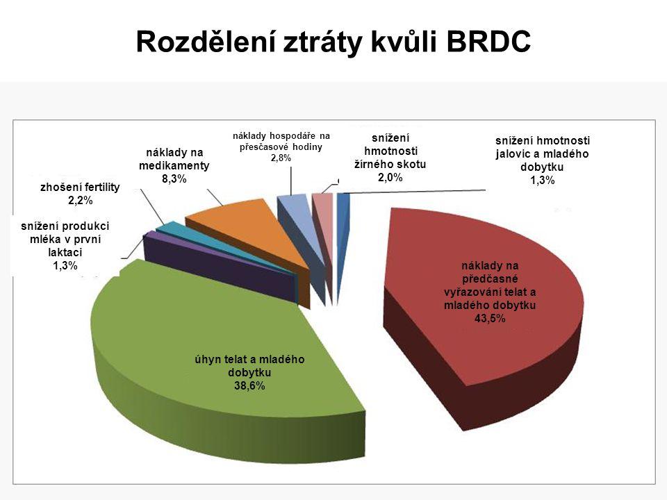 Rozdělení ztráty kvůli BRDC
