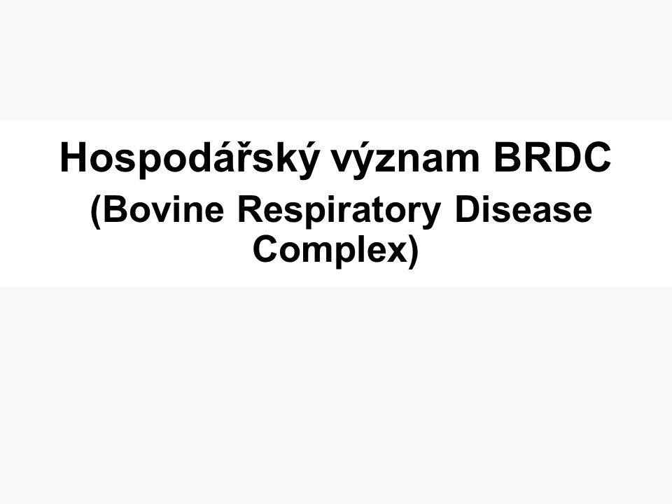 Hospodářský význam BRDC (Bovine Respiratory Disease Complex)
