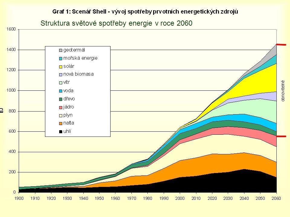 Struktura světové spotřeby energie v roce 2060