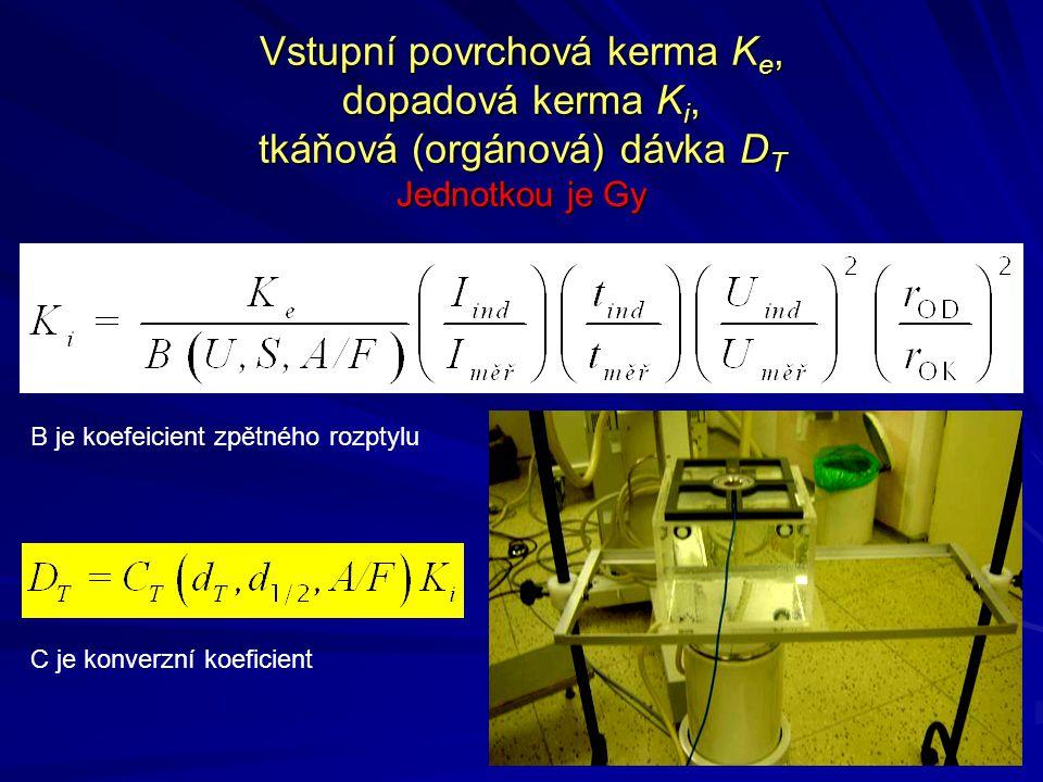 Vstupní povrchová kerma Ke, dopadová kerma Ki, tkáňová (orgánová) dávka DT Jednotkou je Gy