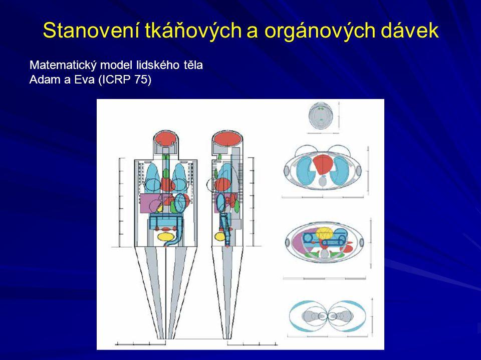 Stanovení tkáňových a orgánových dávek